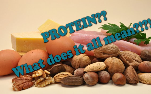 protein-what