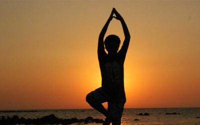 Asana: A Practice of Raja Yoga…Simplified